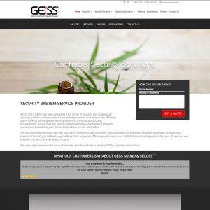 Gess Sound & Security