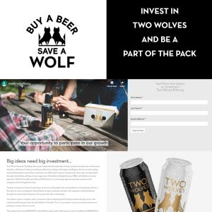 Two Wolves Investment